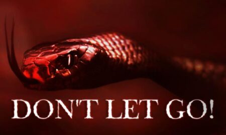 Don't Let Go! PC Version Full Game Free Download